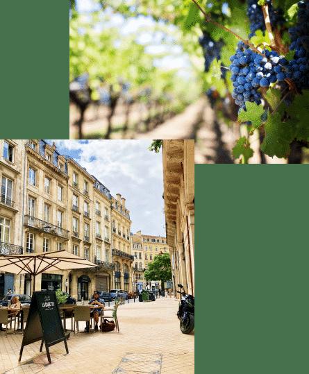 winetour-bordeaux-ville-et-vigne