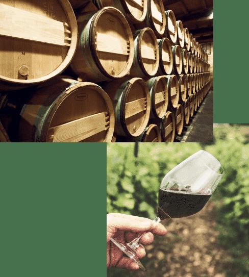 Assemblage Vin Circuit