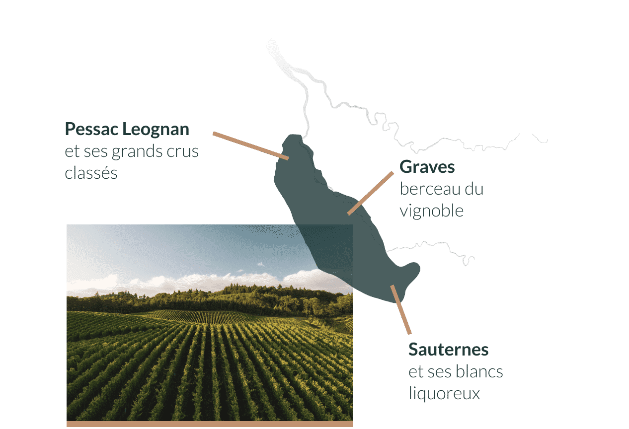 carte-wine-tour-bordeaux-sauterne-grave