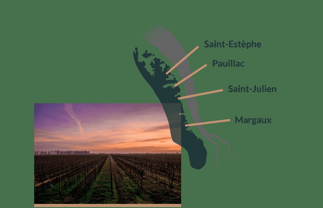 Carte wine tour medoc
