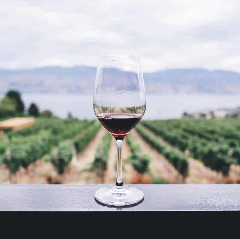 circuit-vin-bordeaux